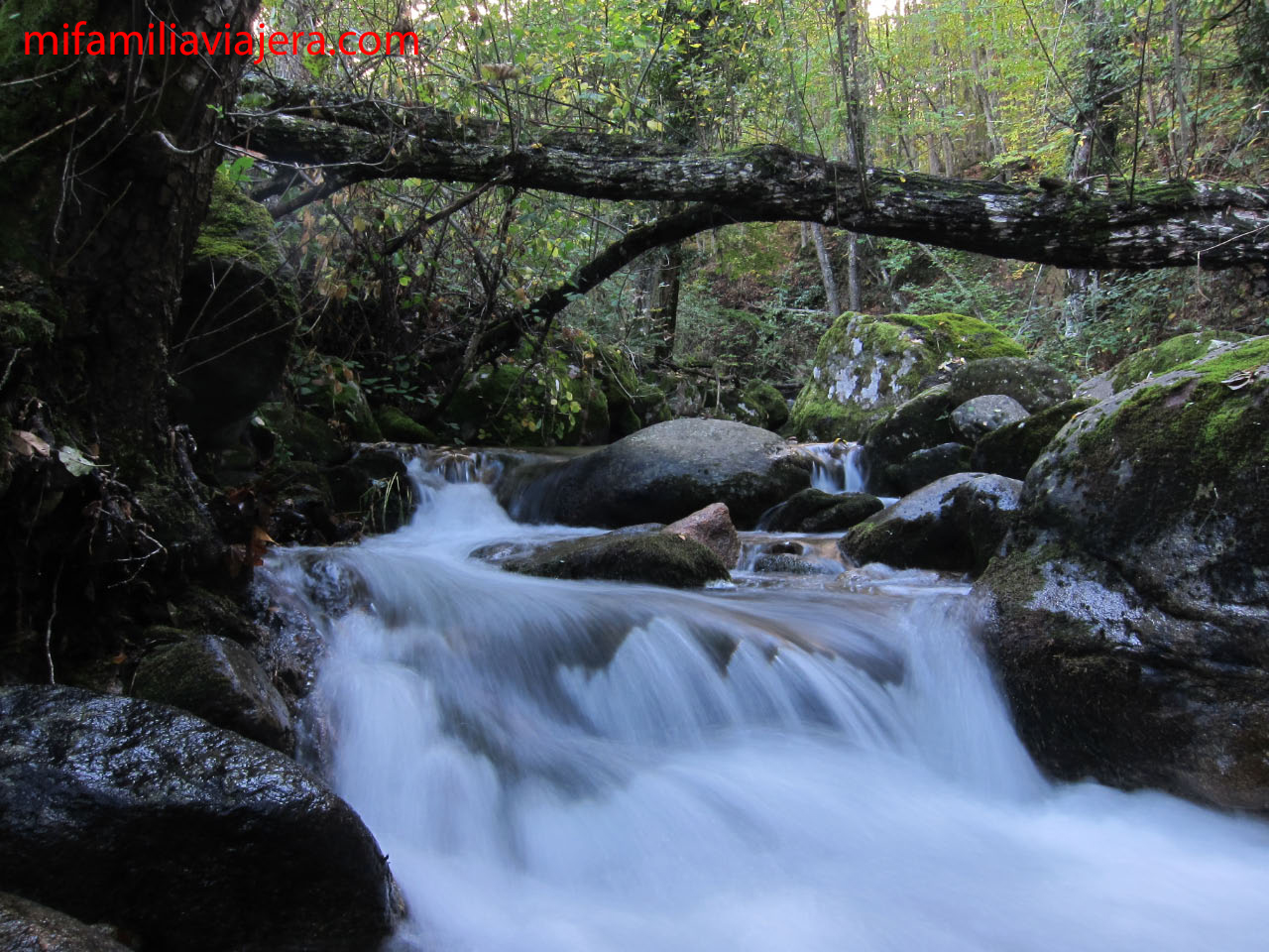 Valle del Ambroz, Hervás