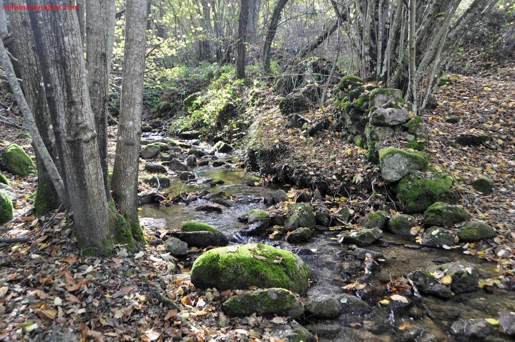 Arroyo de Horquillos