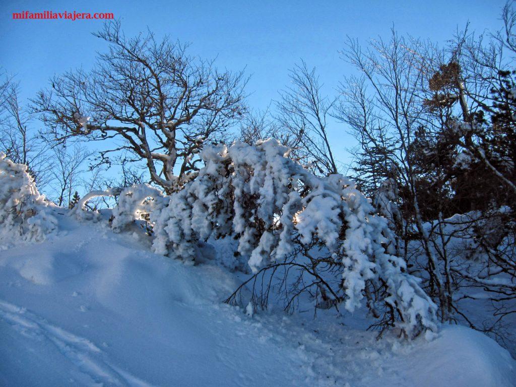 El Ferial es una ruta invernal