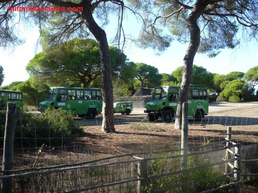Espacio Natural Doñana, Andalucía