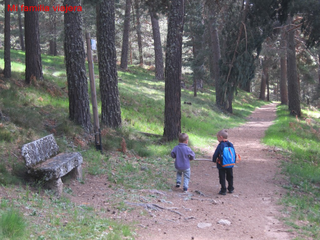 Pinares de Navarredonda, Ávila
