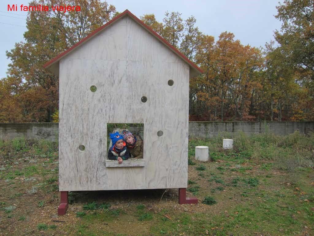 """Obra """"Casa del Árbol"""""""