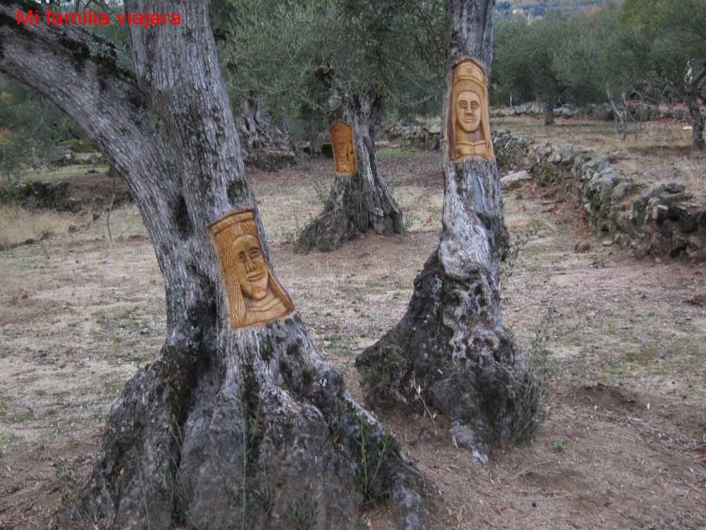 Olivos tallados