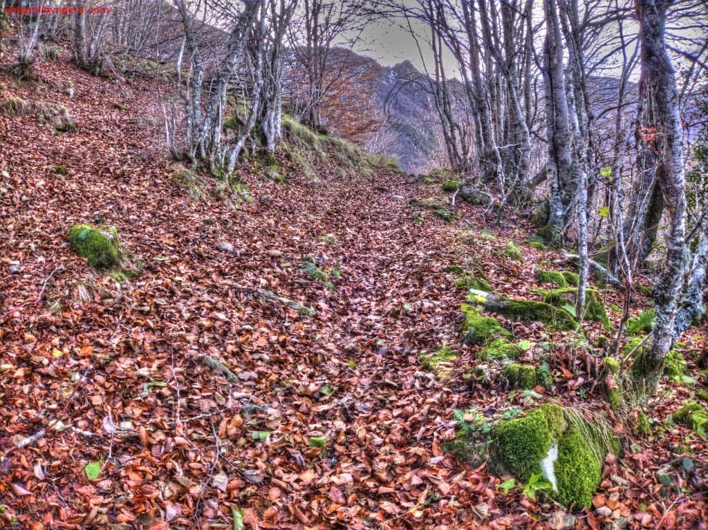 Braña de Mumián, Llamardal , Somiedo, Asturias