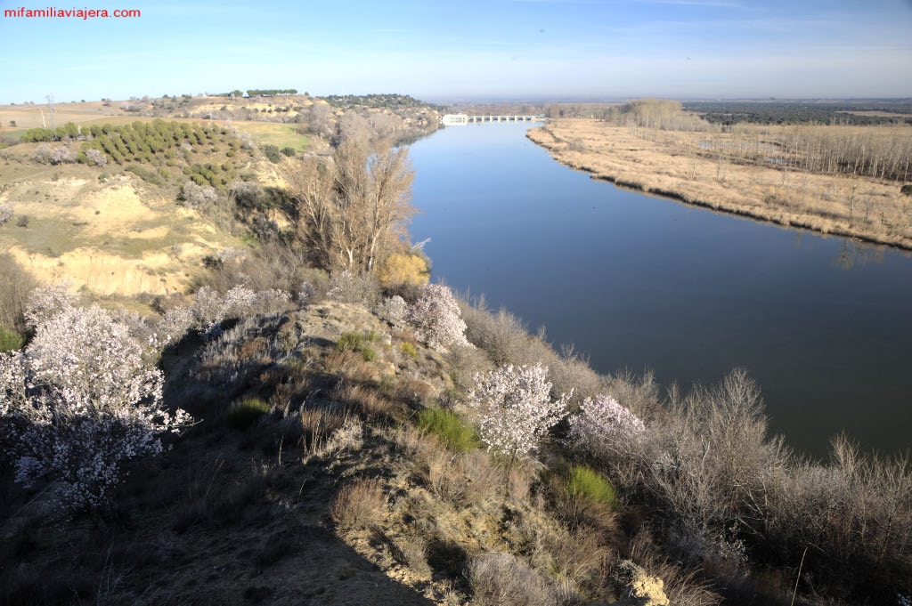 Vega del Duero
