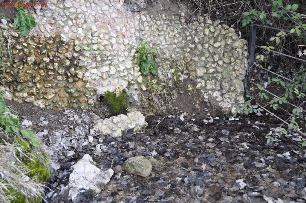 Reserva Natural Riberas de Castronuño - Vega del Duero, Valladolid