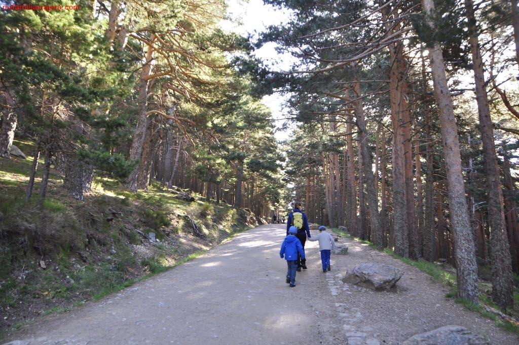 Parque Nacional de la Sierra de Guadarrama, Madrid, Segovia