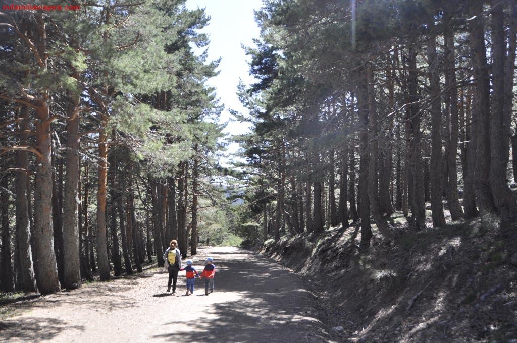 Parque Nacional de la Sierra de Guadarrama, Camino de Zabala, Madrid, Segovia