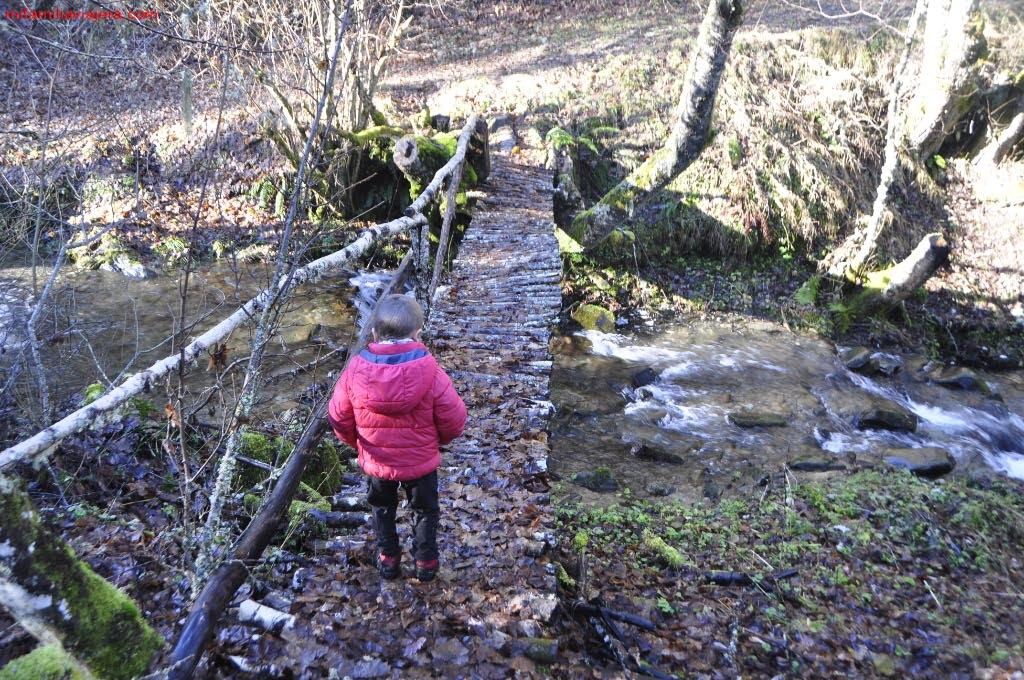 Puente sobre el arroyo de Brañarronda