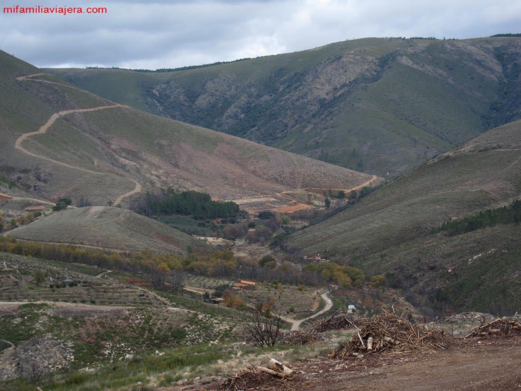 Monte de la Osa, Acebo