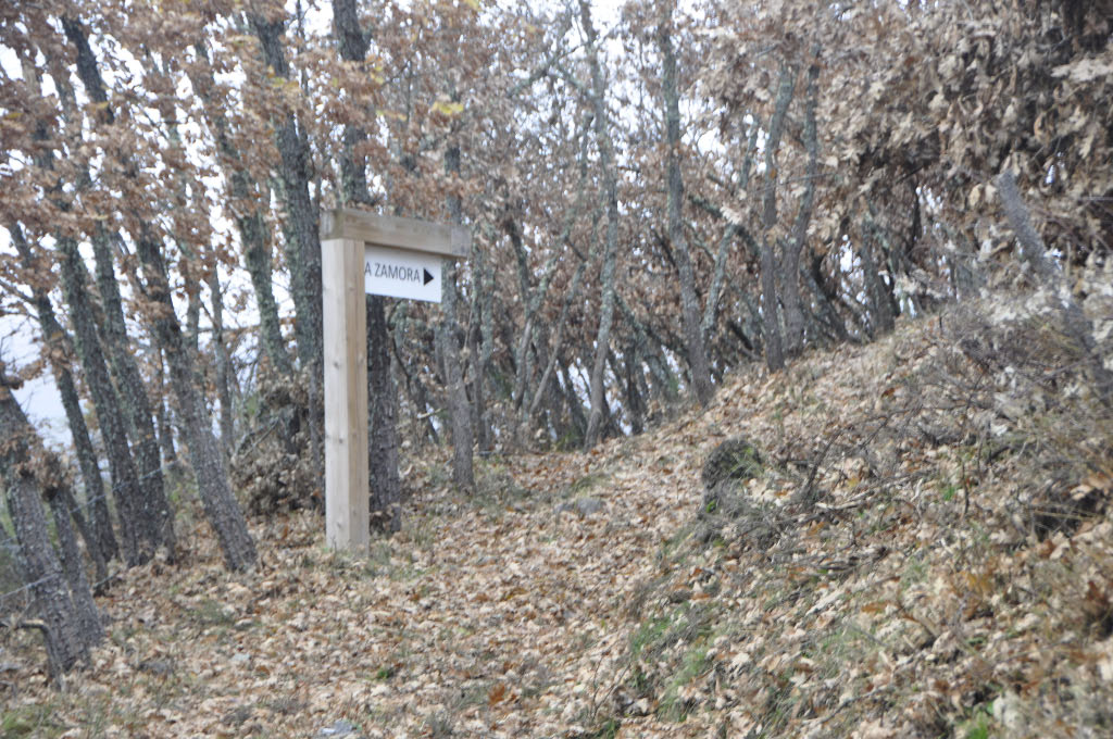 Señalización Ruta La Zamora