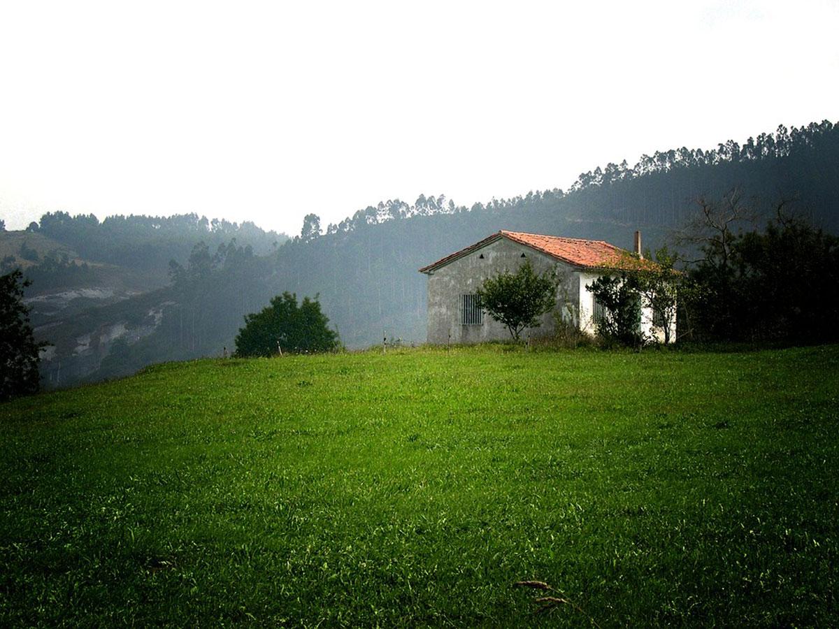 Ventajas de alquilar una casa rural en verano