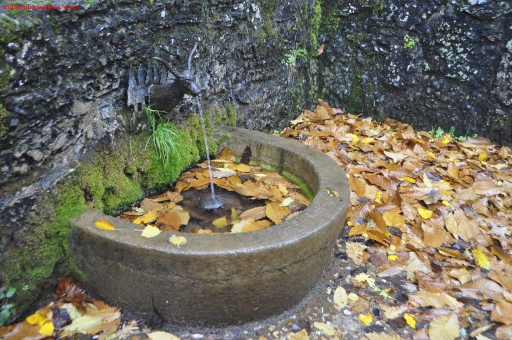 Fuente del área recreativa