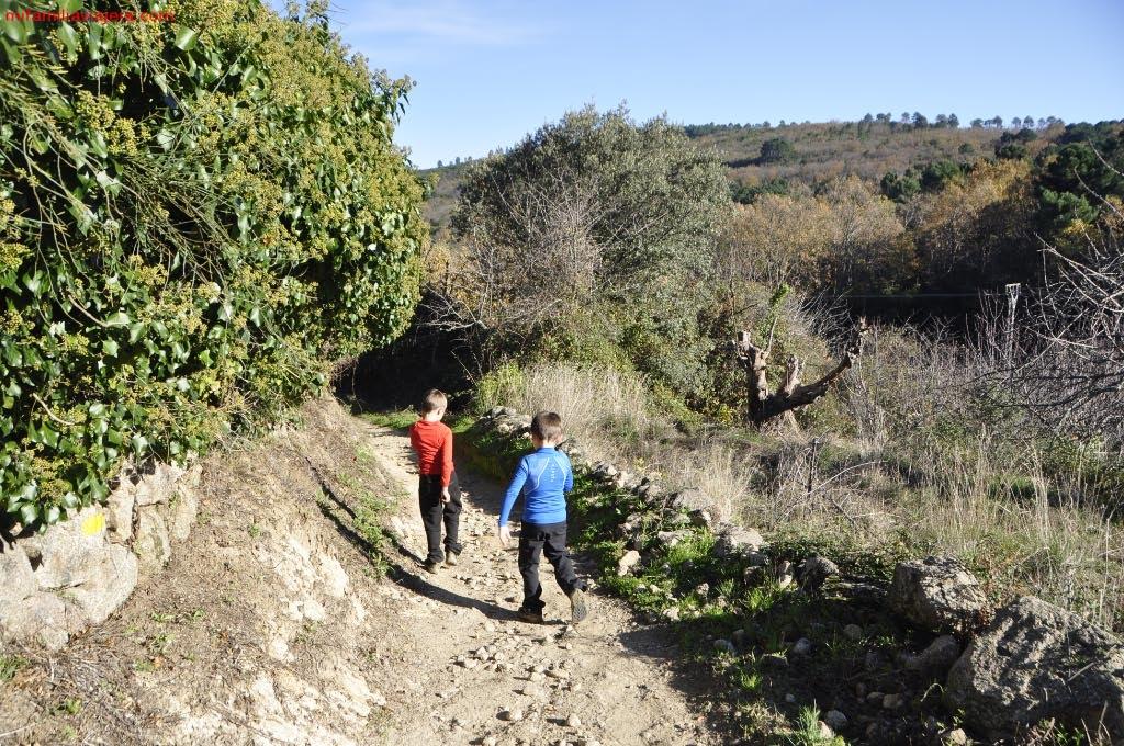 Camino hacia Madroñal