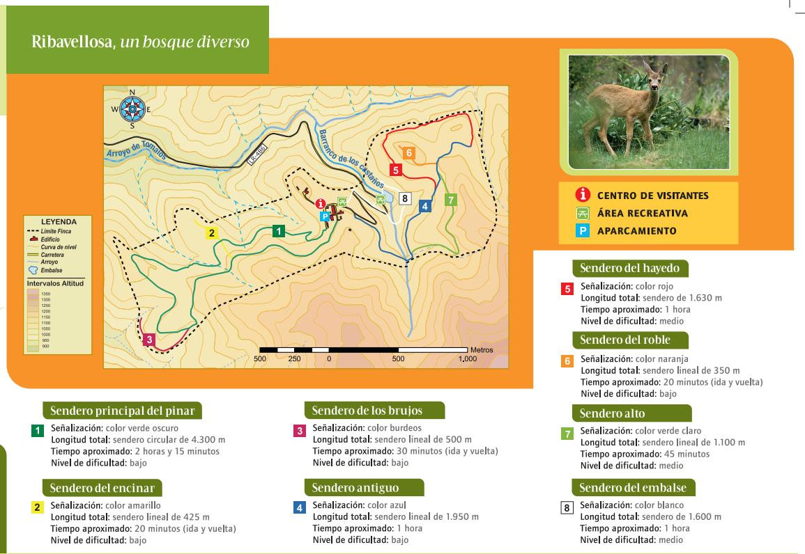Mapa senderos Finca de Ribavellosa