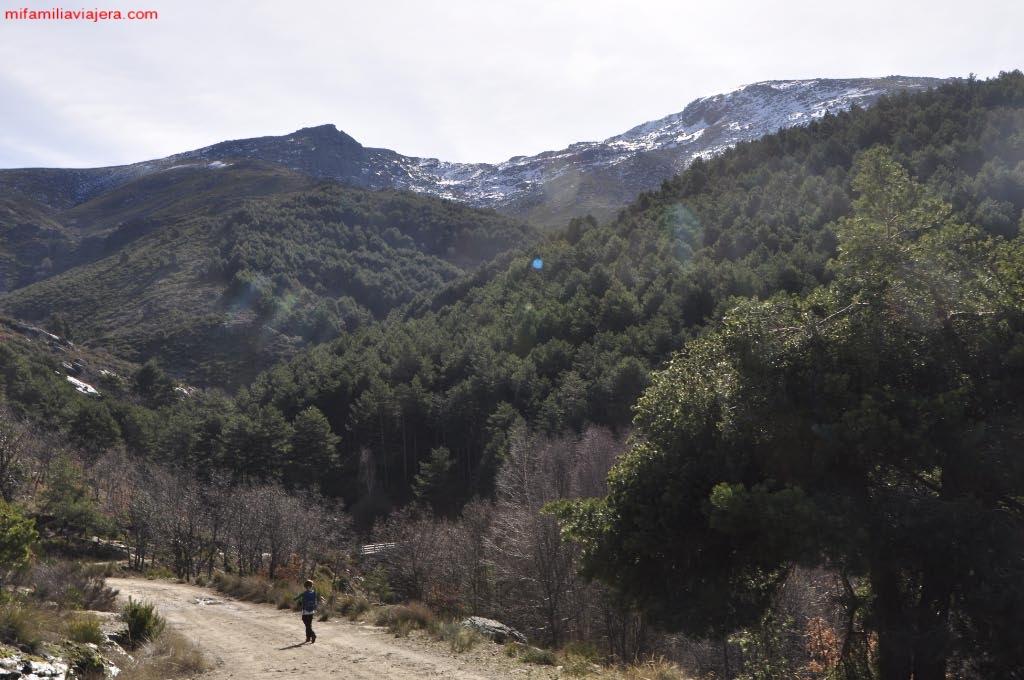 Descenso hacia el puente sobre el Arroyo del Barquillo