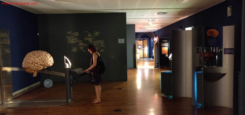 Sala interactiva de La Neurona