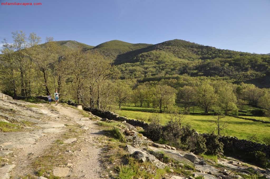 Camino agrícola hacia la Fuente de las Quebradas